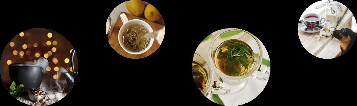 home_tea2_pic9